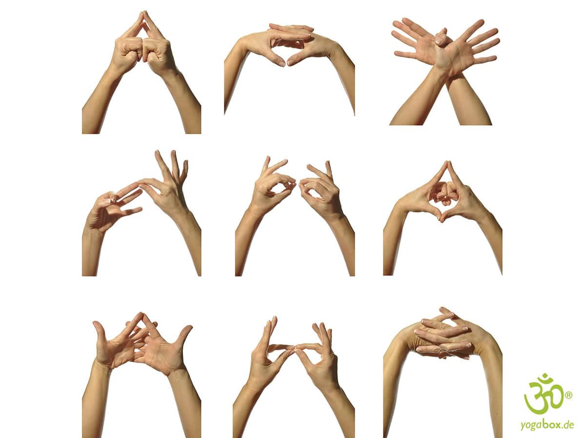 Mudras – Herz der Hatha-Yogapraxis
