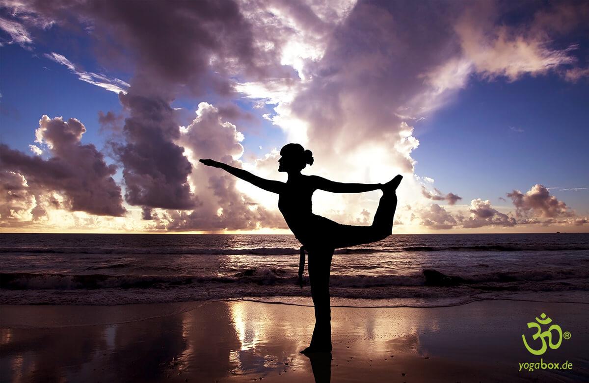 Das Yoga-Programm von Kareen Zebroff