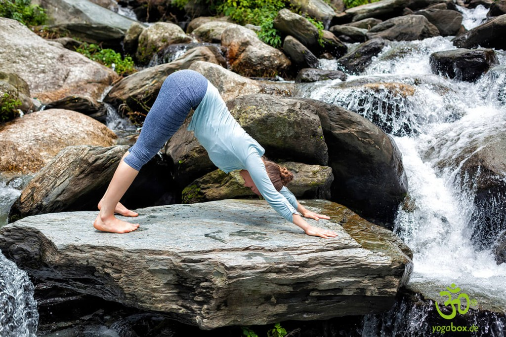 Yoga-Umkehrhaltungen: die Hundehaltung (Adho-Mukha-Svanasana)