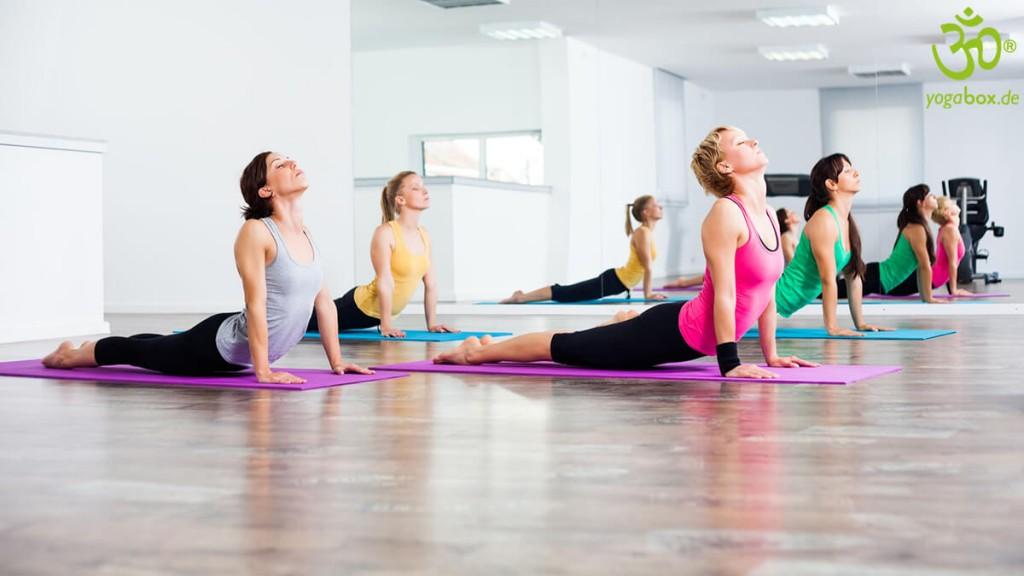 Yoga Rückbeugen: Die Kobrahaltung (Bhujangasana)