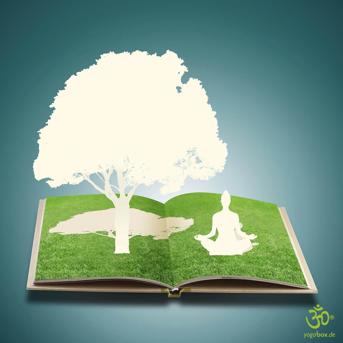 Meditation zwischen zwei Buchdeckeln: Welche Ratgeber sind lesenswert?