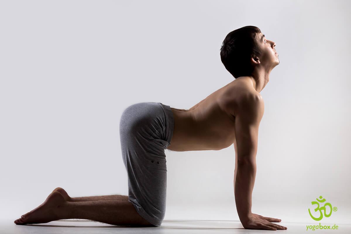 Yoga Übungen für den Bauch