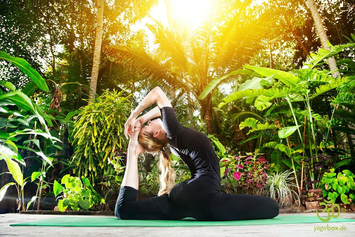 Die Taubenhaltung - Kapotasana - Yoga Rückbeugen