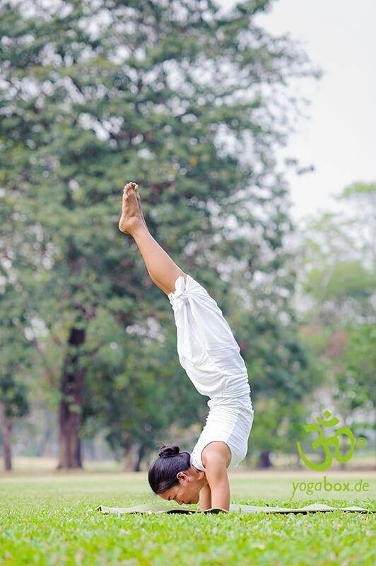 Handstand und Unterarmstand - Adho Mukha Vrikshasana/Pincha Mayurasana