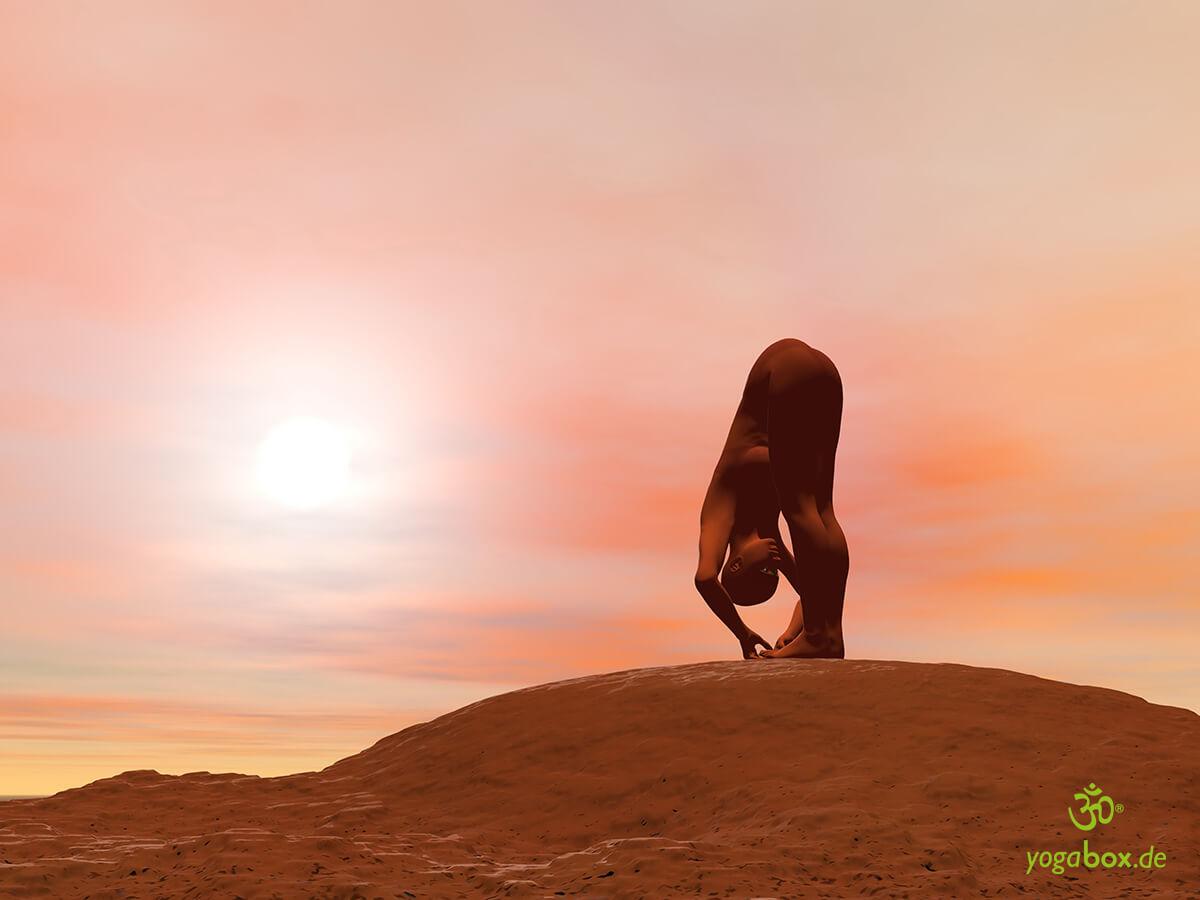 Padangusthasana - die Hand zum Fuss Yoga Haltung