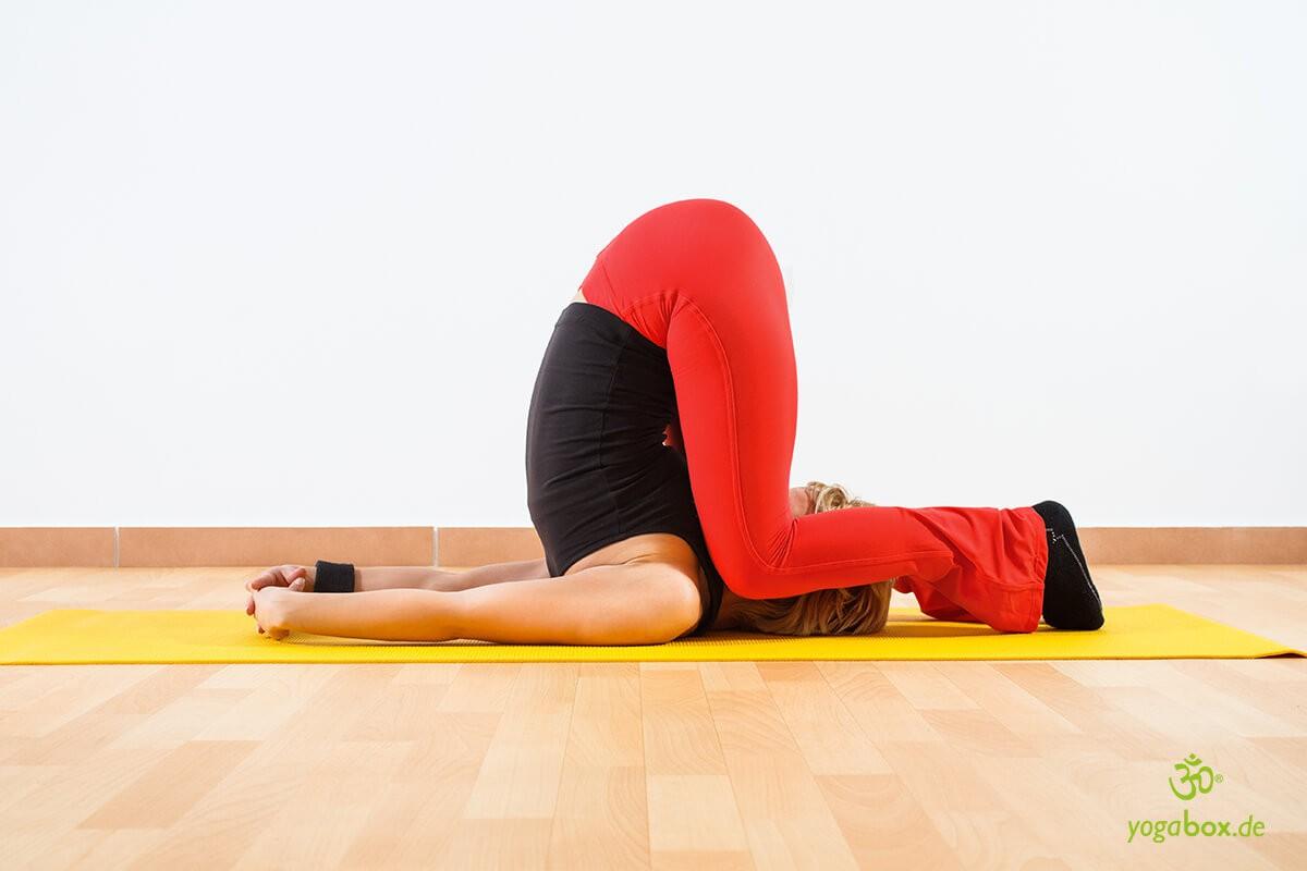 Karnapidasana - die Knie-Ohr-Haltung