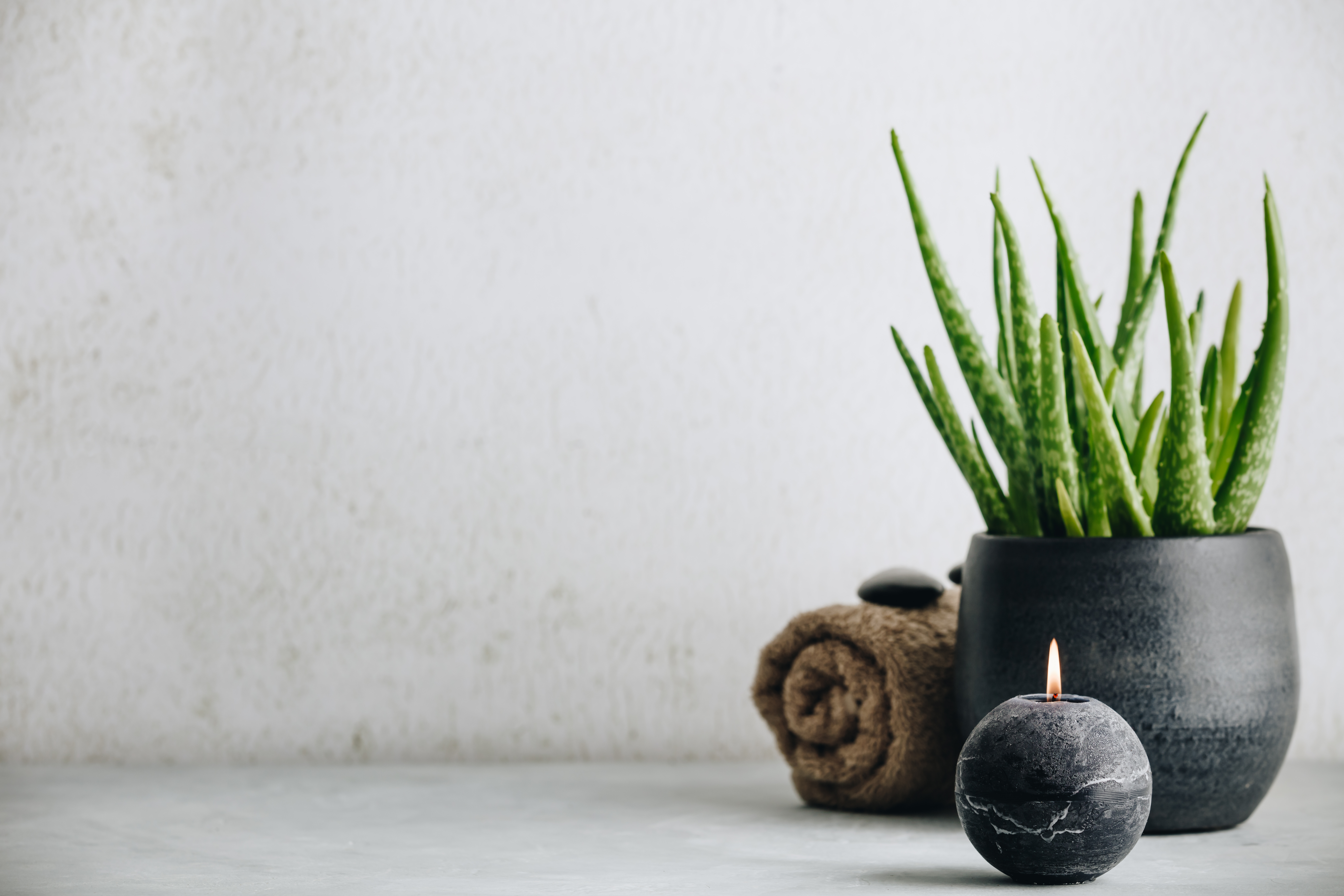 Ayurvedische Kräuter: 4 Heilpflanzen, die Du selber anbauen kannst